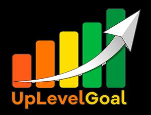 UpLevelGoal บริการการตลาดออนไลน์